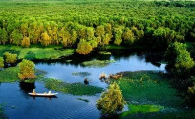 Chau Doc forest scenery