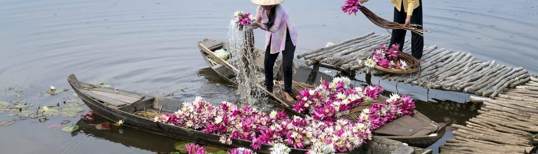 Blumen Mekong Delta