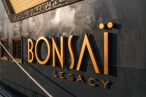 bonsai-cruise