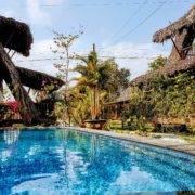 Swimmingpool Ricefield Lodge