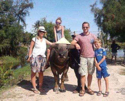 Wasserbüffel Hoi An