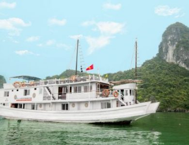 Alova Gold Cruise